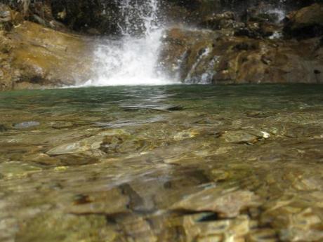 زلال آب